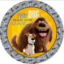 Large The Secret Life Of Pets Plates - pk8