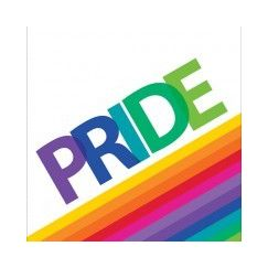 ! Large Rainbow Pride Napkins - pk16