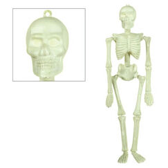 Hanging Glow In The Dark Skeleton
