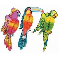 3D Exotic Tropical Bird - Each